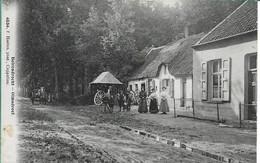 Brasschaat Olmendreef Hoelen 4534 - Brasschaat