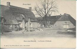 Brasschaat Hoeve Den Elshout Hoelen 718 - Brasschaat