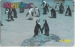 SWITZERLAND - PHONE CARD - PRÉPAYÉE ***  GROUPE DE MANCHOTS  *** - Pinguins