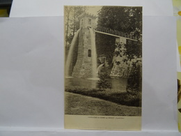 CPA 63, Chute D'Eau Du Champ Par AMBERT 1906 TBE - France