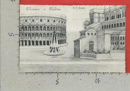 CARTOLINA NV ITALIA - E. F. ROMA - Colosseo E Palatino - Lelli Pio - 9 X 14 - Colosseum