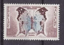 # Madagascar Malagasy .. YT 343  ** SC  Papillon - Madagascar (1960-...)
