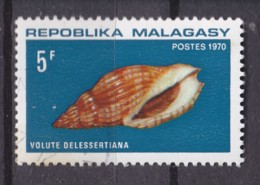 # Madagascar Malagasy .. YT  477 / 479  ** SC  Coquillage Mer Cote 3.50 € - Madagascar (1960-...)