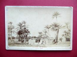 Fotografia Originale Dintorni Di Biskra Oasi Di Zaouia Algeria 1880 Circa - Foto