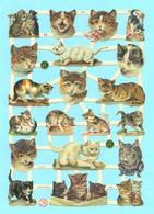 Feuille Complète De Chromos Découpis. Chats. Volle Seite Von Glanzbild Scrap. Katzen. - Dieren