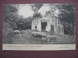 CPA 39 RAHON Chapelle Miraculeuse De Notre Dame Des Bois RARE & ANIMEE Enfants COCHONS COCHON TRUIE 1907 Canton TAVAUX - France