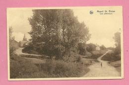 C.P. Mesnil-Saint-Blaise =  Coin  Pittoresque - Houyet