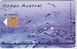 #13 - TAAF-01 - OCÉAN AUSTRAL - BIRDS - 3.000EX. - TAAF - Terres Australes Antarctiques Françaises