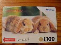 Prepaid Transport Card Japan - Rabbit - Giappone