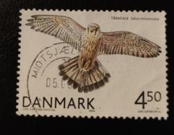 Danemark 2004 DK 1386 Common Kestrel Falco Tinnunculus Animaux Faune | Faucons | Oiseaux | Oiseaux De Proie - Danemark