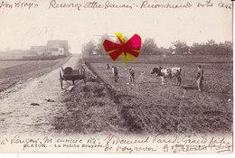 BLATON - La Petite Bruyère - Carte Animée Avec Les Fermiers Cultivant Leur Champ, Moulin à Vent Et Circulé En 1907 - Bernissart