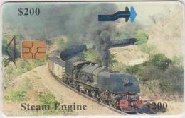 #13 - ZIMBABWE-10 - TRAIN - Zimbabwe