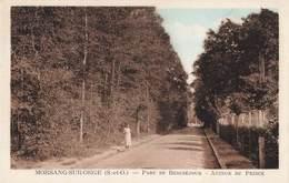 91 Morsang Sur Orge Parc De Beausejour Avenue Du Prince - Morsang Sur Orge