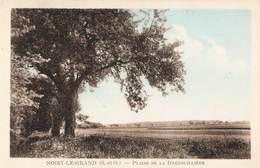 93 Noisy Le Grand Plaine De La Grenouillere - Noisy Le Grand