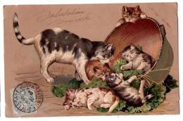 6865b - Série Animalière - S. 4070 - Cp Gaufrée Couleur  , Sans Titre - Une Chatte Et Ses Chatons - - Chats