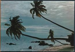 °°° 18556 - SEYCHELLES - BAIE PASQUIERE , PRASLIN - 1973 With Stamps °°° - Seychelles