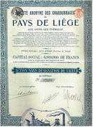 Titre Ancien - Sté Anonyme Des Charbonnages Du Pays De Liège Aux Awirs Lez-Flémalle - Titre De 1923 N°12679 - Mines