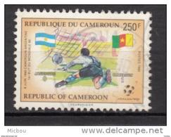 Cameroune, Cameroun, Cameroon, Foot, Football, Coupe Du Monde, World Cup, Fifa - Coupe Du Monde