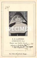 E.Z. Landrie - Verscheure Elisa - Stalhille - Jabbeke