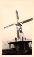 Foto Molen -  Slijpe -  6,5 X 11 Cm - Middelkerke