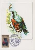 Carte  Maximum   1er  Jour    ANDORRE    PROTECTION  DE  LA  NATURE     Oiseaux   1981 - Sperlingsvögel & Singvögel