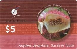 *ZANZIBAR* -  Scheda Usata - Phonecards