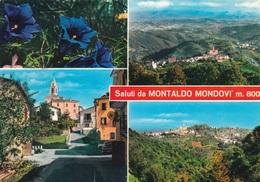 (B597) - MONTALDO MONDOVI' (Cuneo) - Multivedute - Biella