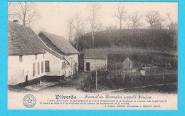 CPA VILVOORDE / VILVORDE : Tumulus Romain Sénéca - Ed. Desaix, Brux. (non Circulée) - Vilvoorde