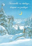 Winter Landscape -  Raimo Partanen - Kerstmis