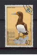 OCEAN INDIEN - Y&T N° 68° - Oiseau - Sula Dactylatra - Territoire Britannique De L'Océan Indien