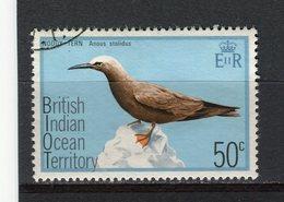 OCEAN INDIEN - Y&T N° 69° - Oiseau - Anous Stolidus - Territoire Britannique De L'Océan Indien
