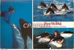 CPM Sea World American's Finest Marine Like Park San Diego California - Stati Uniti