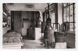 - CPSM GAVARNIE (65) - Parfumerie Du Marboré - Batterie D'Alambics - Photo CAP - - Gavarnie