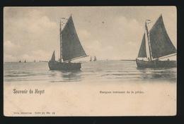 HEIST  BARQUES REVEMENT DE LA PECHE - Heist