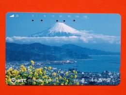 T-104 - JAPAN, TELECARD, MAGNETIC PHONECARD NTT - 291-197 - Japon