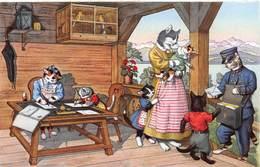 POSTMAN CAT - ANTHROPOMORPHIC CATS POSTCARD #21601 - Chats