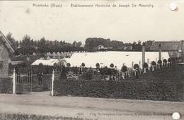 Moerbeke ( Waes )- Etablissement Horticole De Joseph De Meurichy - Moerbeke-Waas