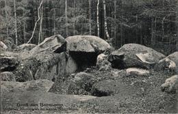 ! 1915 Alte Ansichtskarte Aus Barskamp, Bei Bleckede, Niedersachen, Hünengrab - Dolmen & Menhire