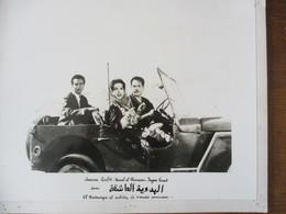 EL BADAWIYA EL ACHIKA (LA BEDOUINE AMOUREUSE) SAMIRA TEUFIK,KAMEL EL SHENNAOUI,JLAGWA FONAD 30cm/24cm - Personalità
