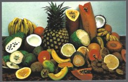 CP  CB-3-CARIBBEAN Greetings- Saludos- Variety Of Tropical Fruits . Unused - Autres