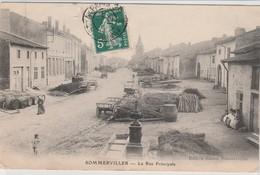 SOMMERVILLER - Frankreich