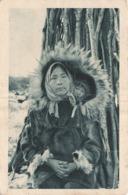 ALASKA - Capuchon Pour Deux - Cercle Arctique - United States
