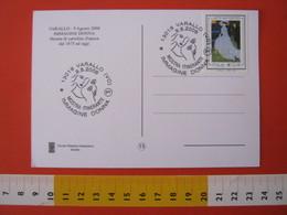 A.15 ITALIA ANNULLO 2008 VARALLO VERCELLI IMMAGINE DONNA MOSTRA ITINERANTE FIORI FIORE FLOWERS FLORA VOLTO - Flora