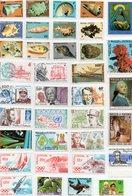 Wallis Et Futuna  - Lot De 55 Timbres Neufs - Lots & Serien