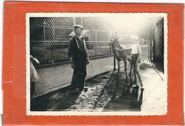 LOZERE : Mende,  Visite Au Jardin Public... Photographie Années 60...Lire Le Descriptif - Mende