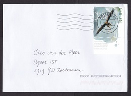 Netherlands: Cover, 2020, 1 Corner Stamp + Tab, Sea Eagle Bird (traces Of Use) - Storia Postale