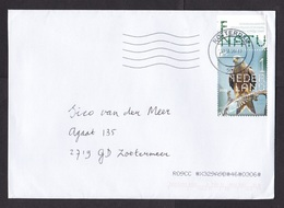 Netherlands: Cover, 2020, 1 Stamp + Tab, Red Milvus Prey Bird (traces Of Use) - Storia Postale