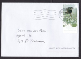 Netherlands: Cover, 2020, 1 Stamp + Tab, Hen Harrier Prey Bird (traces Of Use) - Storia Postale