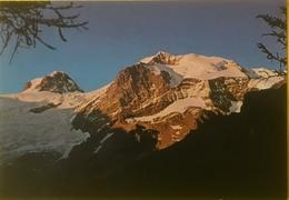 (3228) Twilight On The Mount Rosa - 4633m - Italy