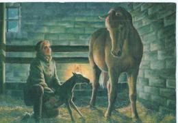 Cheval - Horse - Paard - Pferd - Chevaux